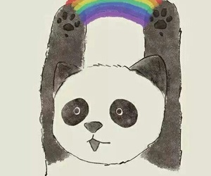 panda, wallpaper, and rainbow image