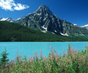 beautiful, landscapes, and montains image