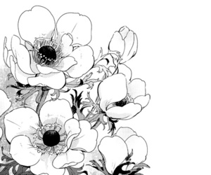 flowers, manga, and black and white image