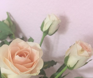aesthetics, flowers, and pale image