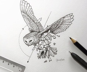 owl, art, and drawing image
