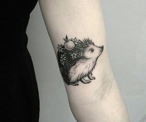 apple, hedgehog, and ink image