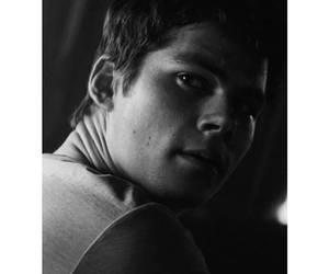teen wolf, the maze runner, and stiles stilinski image