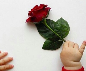baby, red, and flower image