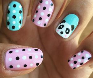 nails, uñas, and osos image
