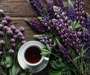 coffee, flowers, and purple image