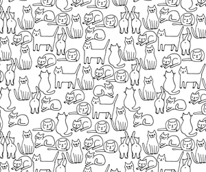 background, black and white, and cat image