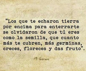 frases, tierra, and envidia image