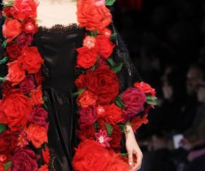 fashion and Dolce & Gabbana image