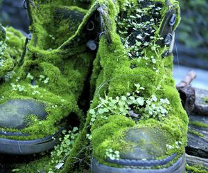 boots and nature image