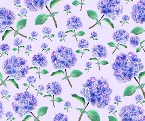 background, flower, and hydrangea image
