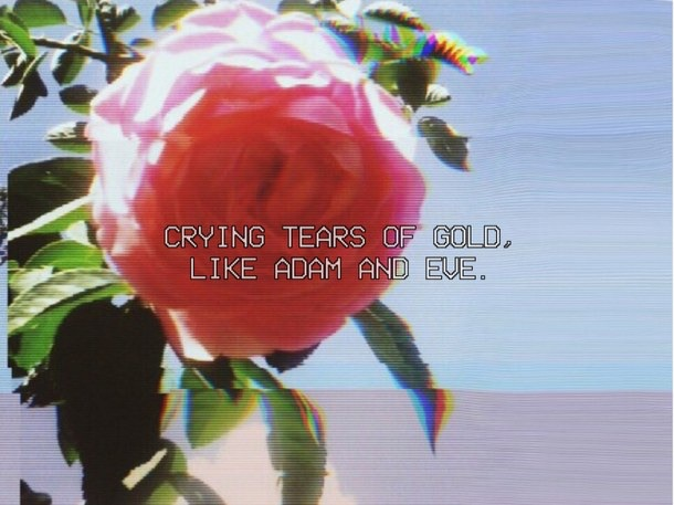 grunge, quotes, and vintage image