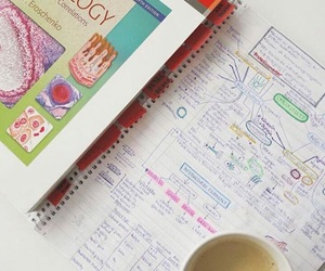 coffee, notes, and university image