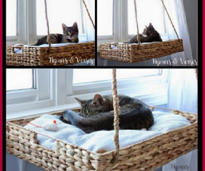 cat bed, cats, and diy projects image