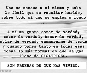 frases, Joaquin, and quotes image