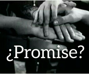 promise, liam payne, and niall horan image