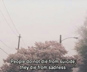 sadness, suicide, and sad image