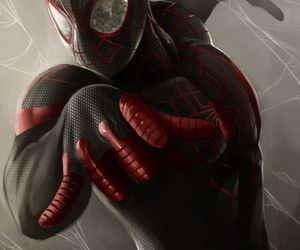 spiderman wallpapers image