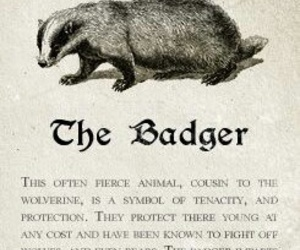 badger, harry potter, and hufflepuff image