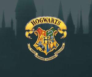 hogwarts, gryffindor, and slytherin image