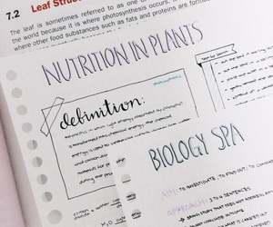 school, inspiration, and notes image