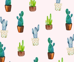 background, pattern, and cactus image