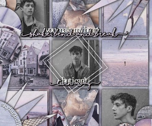 edit, lilac, and troye sivan image
