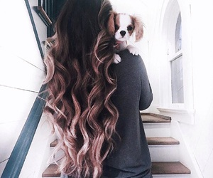 brunette, dog, and ombre image