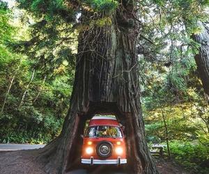 amazing, car, and photo image