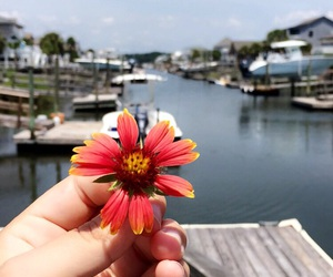 beach, boats, and flowers image