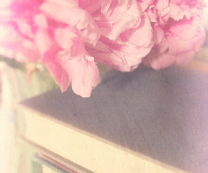antique books, etsy, and fine art photography image