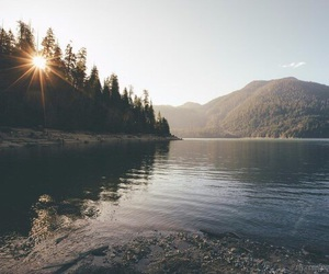 nature, lake, and forest image