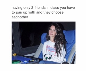 funny, friends, and lana del rey image