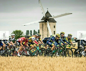 cycling, tour de france, and sport image