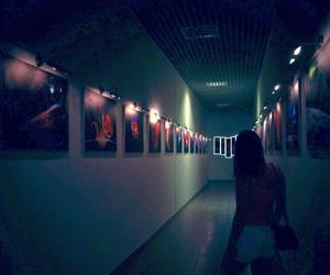 cosmos, exhibition, and gallery image