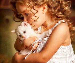 cat, animal, and child image