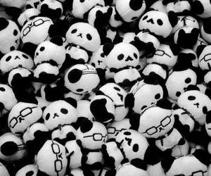 panda and toys image
