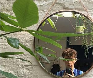 troye sivan, green, and plants image