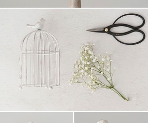 diy, bird, and decor image