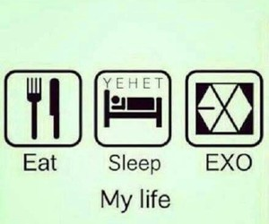 exo, life, and kpop image