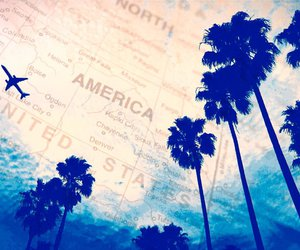 america, travel, and palms image