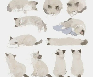 animal, art, and cat image
