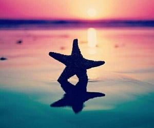 stars, sea, and summer image