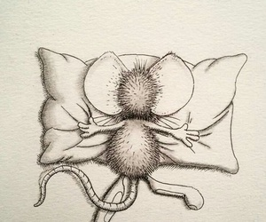 arte, glome, and dormir image