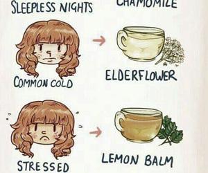 tea, health, and tips image