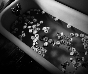 black and white, flowers, and grunge image