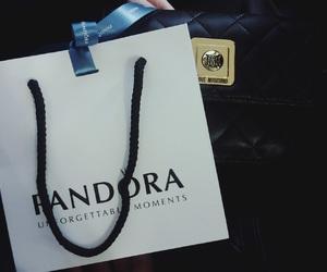 bag, fashion, and jewelry image