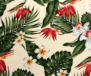 etsy, hawaii, and tropical leaves image