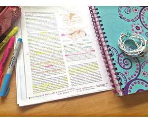 book, brain, and college image