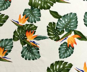 Bird of Paradise, etsy, and hawaii image